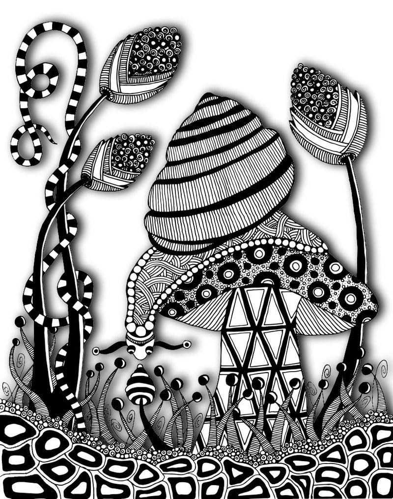 Snail trace 50 shadows